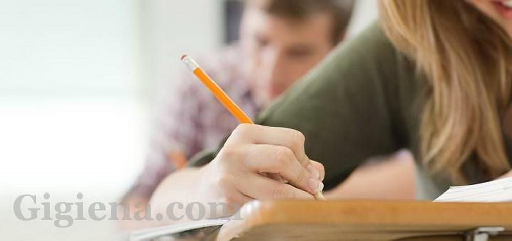 Обучение — залог будущей карьеры