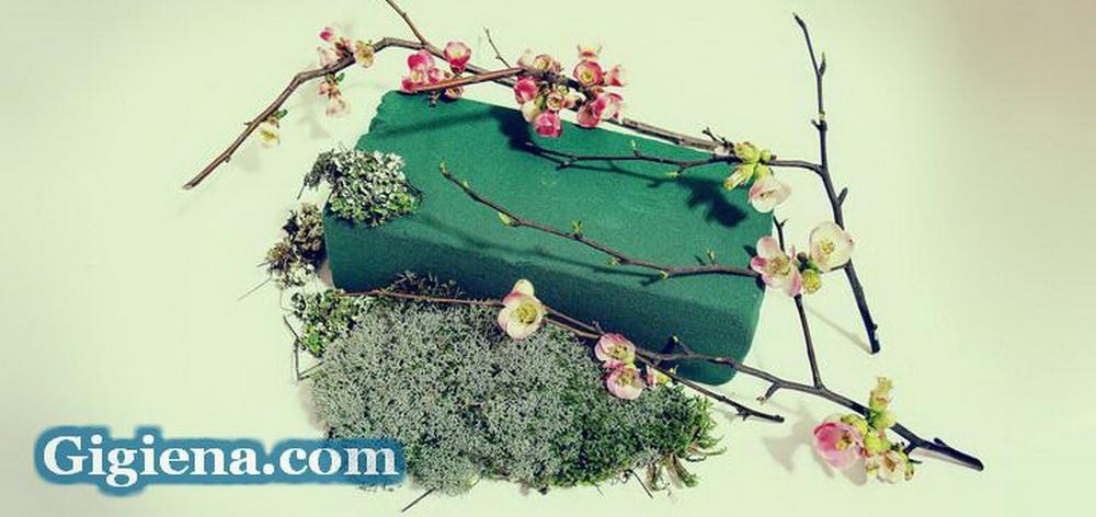 оазис для флористики
