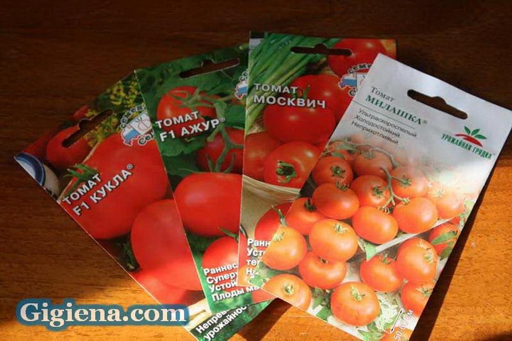 семена томатов