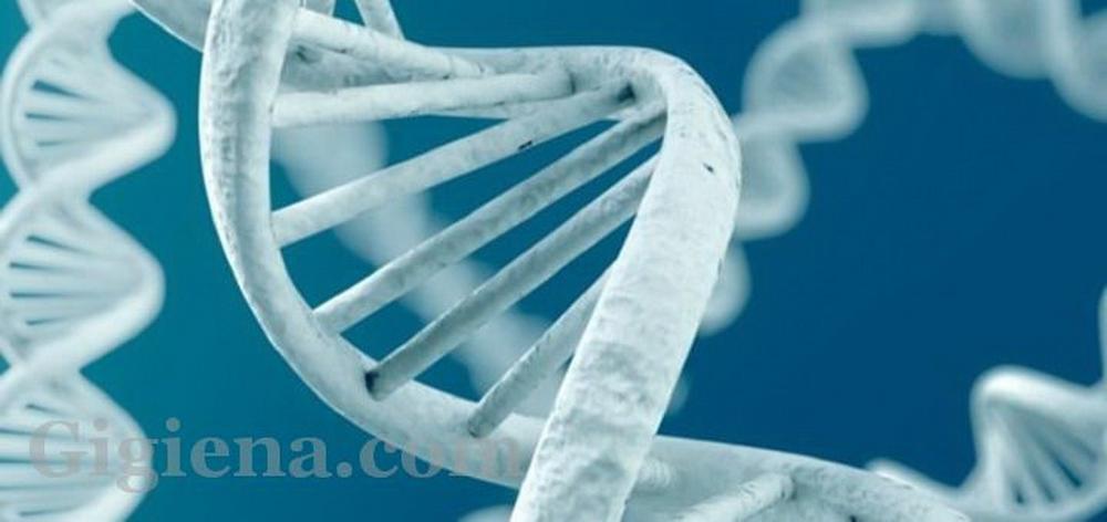 зависимости от генов
