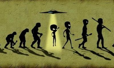 результат биологической эволюции