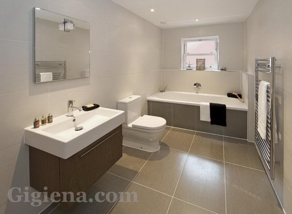 мебель и интерьеры ванных комнат