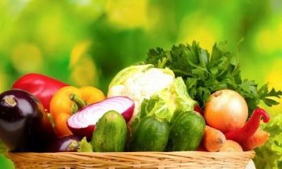 теория адекватного питания